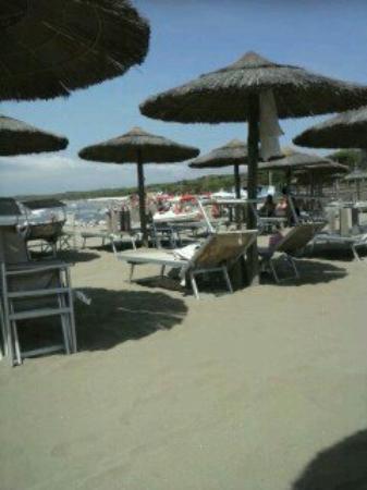 Ansedonia, Italien: 1407878934518_large.jpg