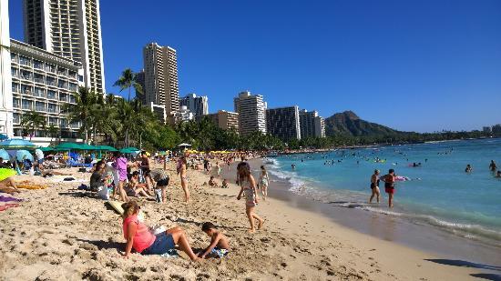 Coconut Waikiki Hotel Photo