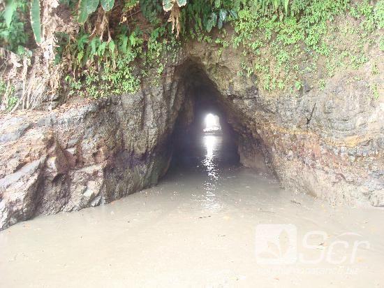 Ballena, Costa Rica: cave