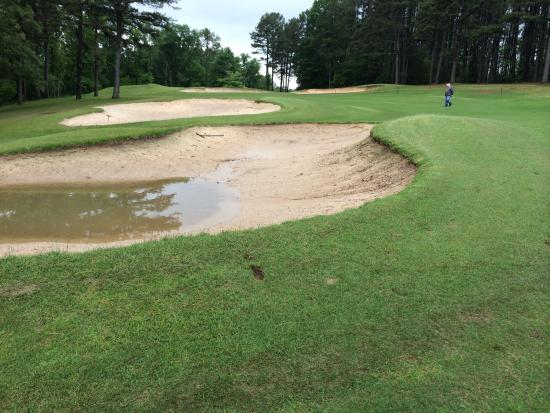 Fairfield Bay, AR: Played in May 2015 after three days of rain. Cart path only.