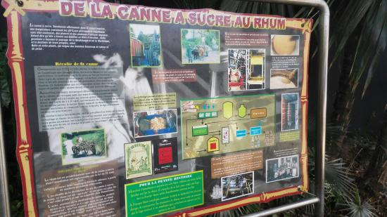Le Moule, Guadeloupe: IMG_20160121_090513_large.jpg