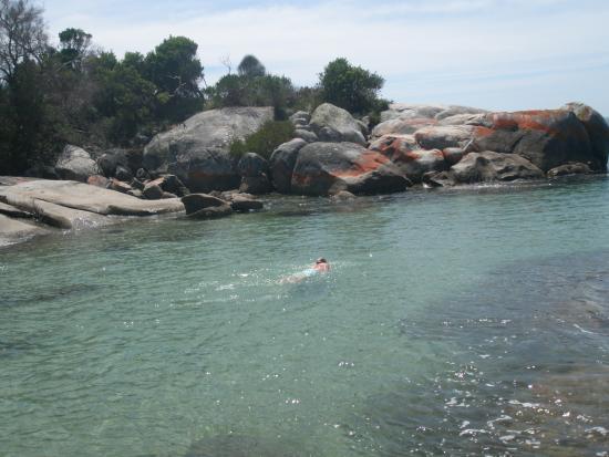 Bridport, Australië: Mermaids pool