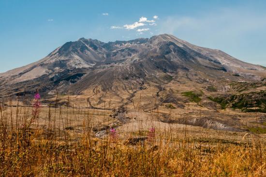 Amboy, واشنطن: Mount St Helens for Johnson Ridge