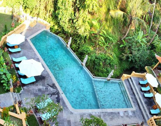 ศรี บังกาโลส์ อุบุด: pool