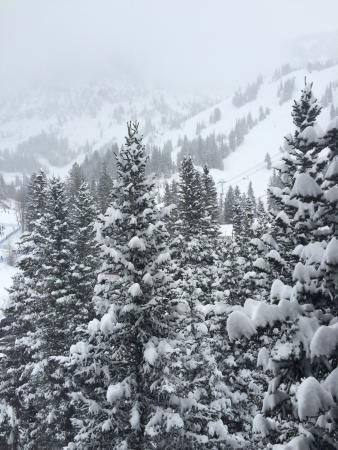 Snowbird, Юта: photo0.jpg