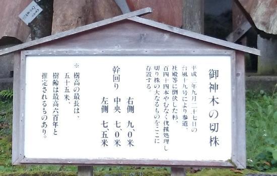 Unaki Hime Shrine: 倒れたご神木の説明板
