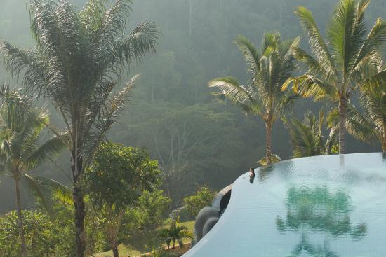 Payangan, Indonesien: Infinity Pool