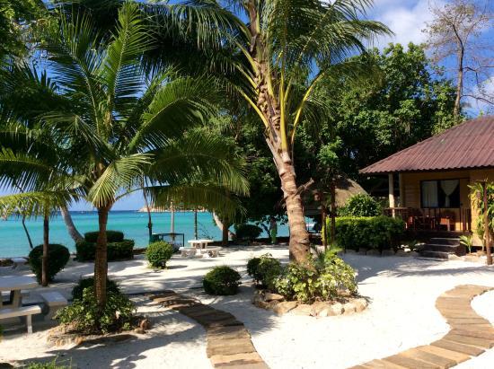 Picture of ko tao resort koh tao tripadvisor - Ko tao dive resort ...