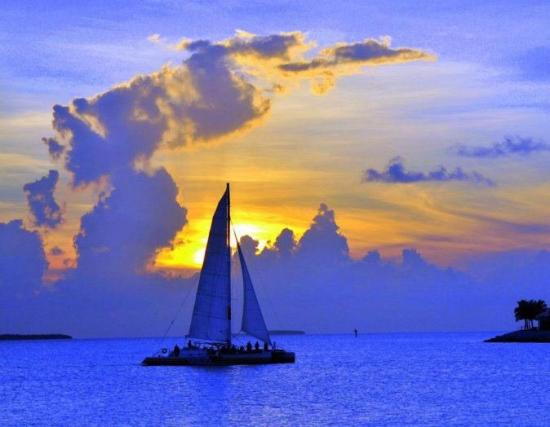 Ocean Court Motel : Sailboat Charters are available near the motel