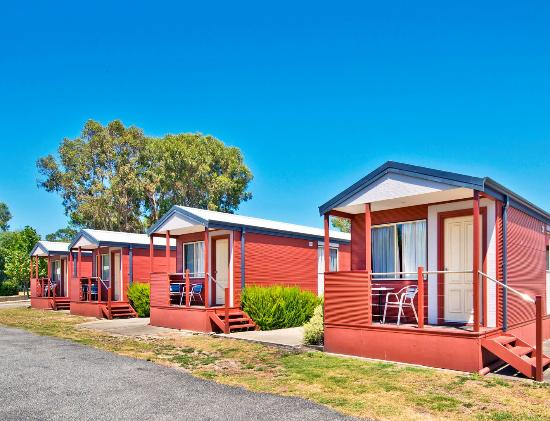 Albany Holiday Park: Park Cabins