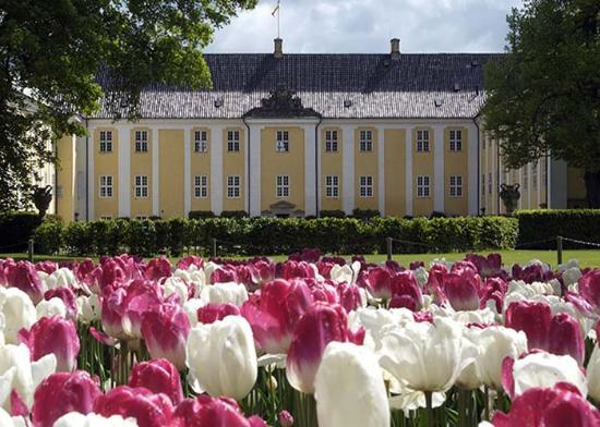 Naestved, Denemarken: Tulipaner foran Gavnø Slot