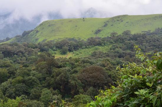 Kodachadri Shimoga Tourist Places