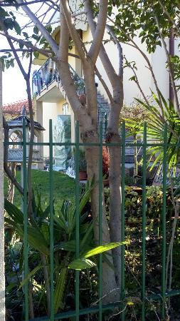 B&B Girasole: Giardino ombreggiato