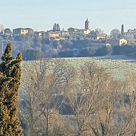 Villa il Borghetto: IMG_20160124_091614_large.jpg