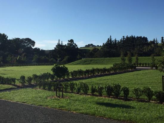 Matakana, Nowa Zelandia: photo0.jpg