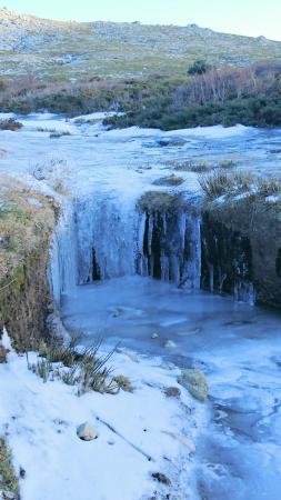 Quenza, Francia: Fin janvier très peu de neige sur le plateau