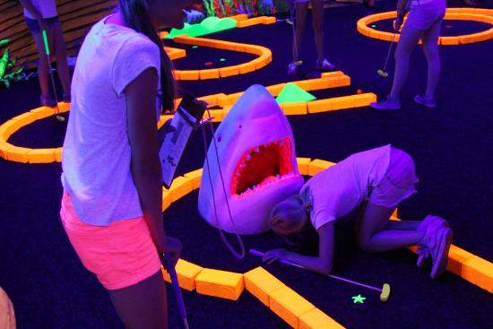Hellevoetsluis, เนเธอร์แลนด์: Glow in the dark golfen op de camping!