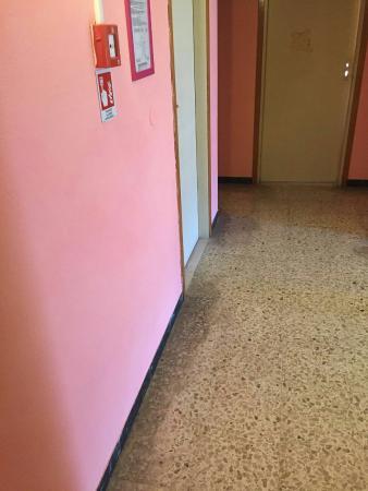 Hotel Villa Ombrosa : IMG-20160124-WA0015_large.jpg
