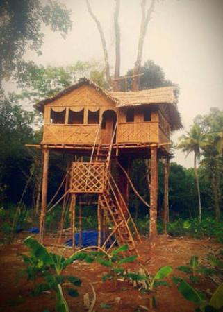 Kothamangalam, Индия: getlstd_property_photo
