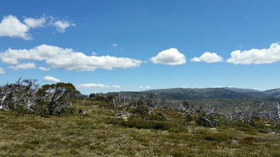 Perisher Valley, Australie : Views from nearby Porcupine rocks