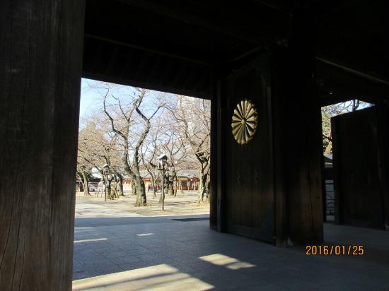 Yasukuni Shrine: IMG_1491_large.jpg