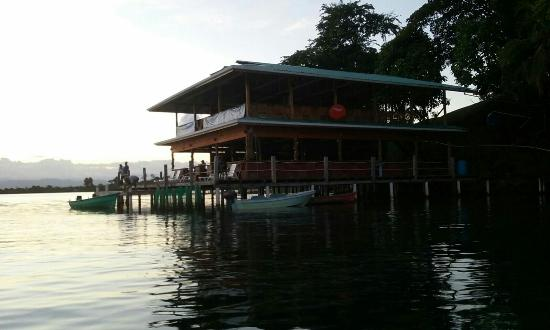 Tripadvisor Bocas Del Toro Panama: Prices & Reviews (Panama/Bocas