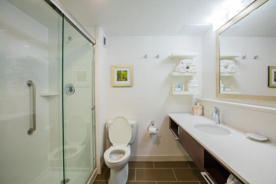 Hampton Inn Atlanta - Northlake: Guest Bathroom