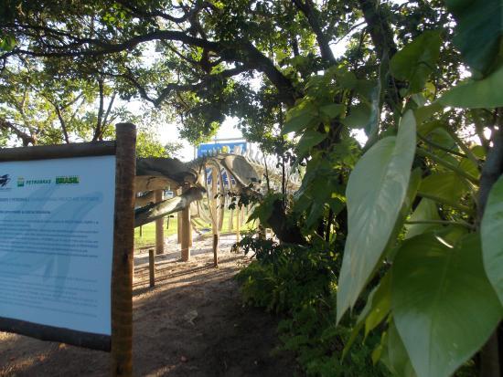Centro de Visitantes Espaco Baleia Jubarte