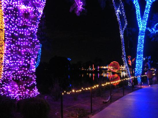 Phoenix Christmas Lights 2020 Review Phoenix Zoo   2020 All You Need to Know BEFORE You Go (with Photos