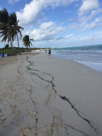 Beach - Pullman Cayo Coco Photo