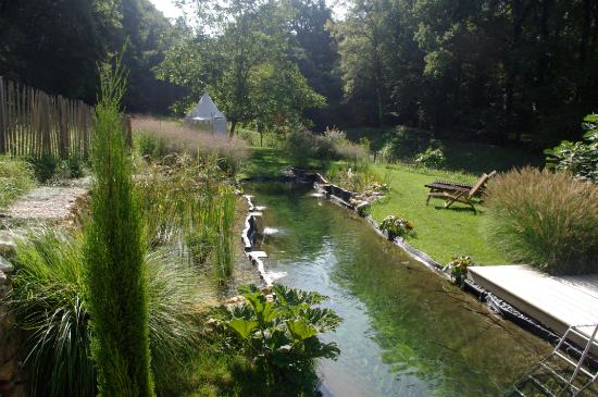 Rigny-Usse, Francja: La piscine naturelle