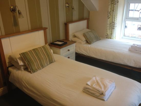 Machynlleth, UK: Twin Room with Bath & Shower