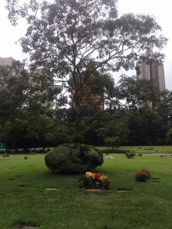Senna's Grave Morumbi Cemetery Aufnahme