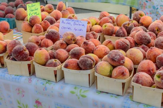 Schenectady, NY: Fresh, local fruit