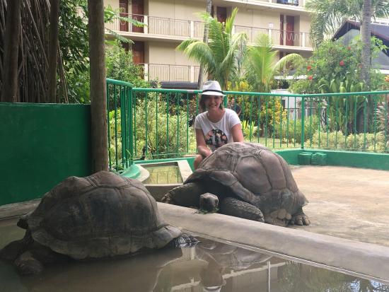 Coral Strand Smart Choice Hotel Seychelles: photo0.jpg