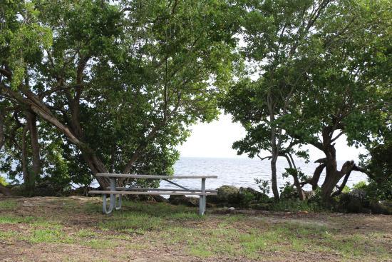 A5 picnic area
