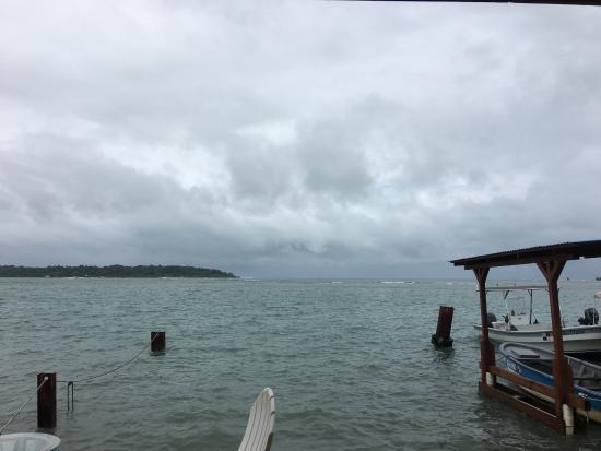 Bocas Blended: photo0.jpg
