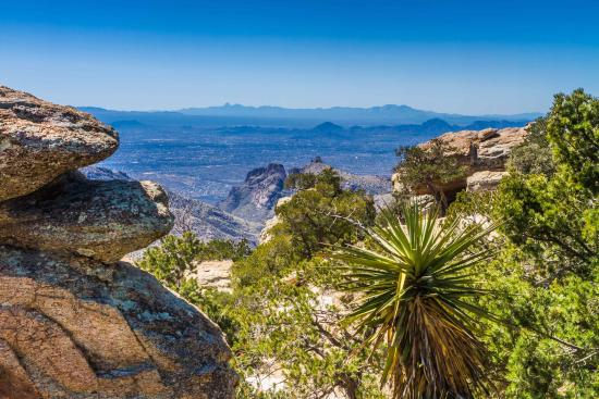 With five mountain ranges surrounding Tucson, a journey to an entirely different eco-system is a