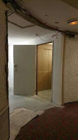 Orly, Francia: Ibis : oiseau de  mauvaise augure vivement que les travaux se terminent  odeur de plâtres. ..
