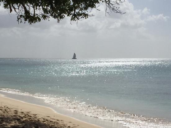 Porters, Μπαρμπάντος: photo8.jpg