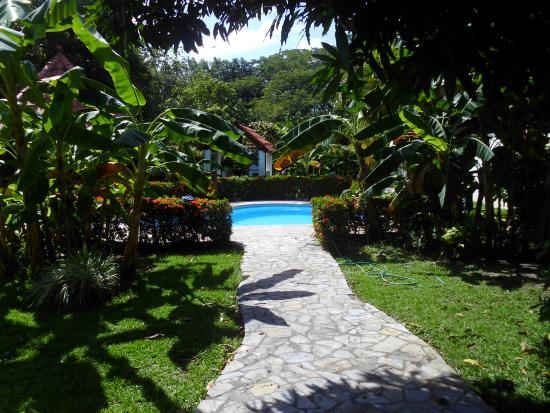 Chame, Panama: View of the pool and the garden!