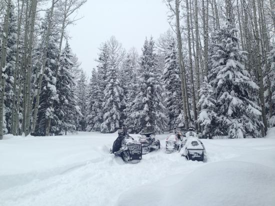 Cimarron, CO: snow days