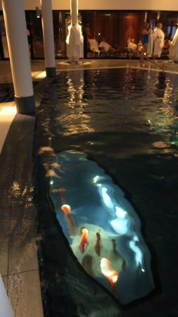 Kosta, السويد: konst under inomhus poolen