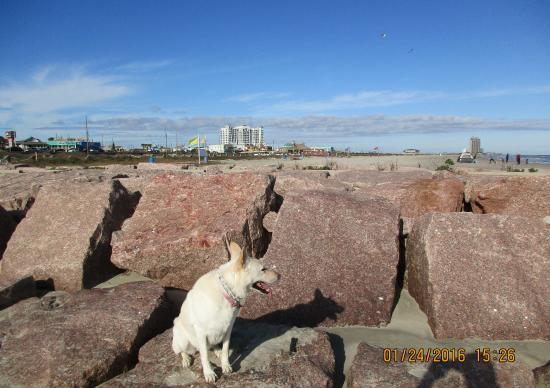 Granite Block Seawall : Large g picture of the seawall