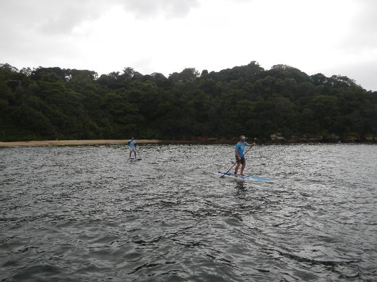 Foto de Sydney Scenic SUP