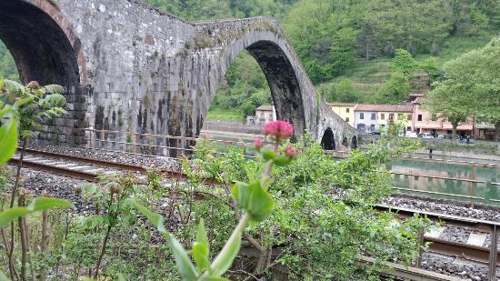 Borgo a Mozzano, Italia: IMG_20150501_101828_large.jpg