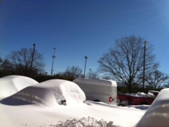 Red Roof PLUS+ Baltimore North - Timonium: Our parking lot late afternoon after snow stopped at dawn