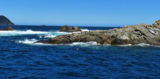 Manapouri Foto