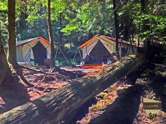 Olga, واشنطن: LEANTO | Moran State Park Glamping | Site 7