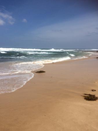 Portsea, Australia: photo5.jpg